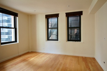 Beautiful & Spacious 1 Bedroom in the Financial District